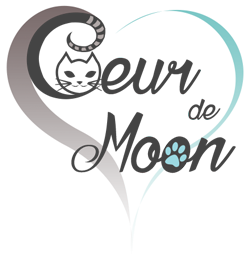 Logo Chatterie Bengal Main Coon